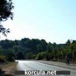 Cycling from Korcula to Lumbarda