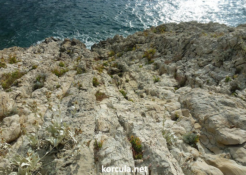 Detail of the wild rocky coastline on Defora