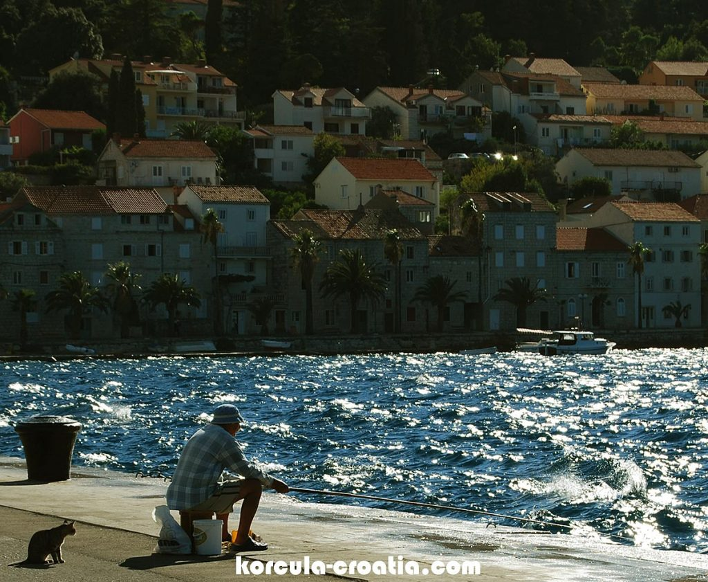 Photo: Fishing by a rod in the local port
